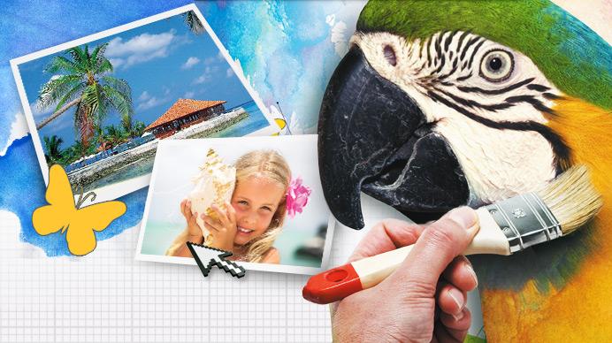 Bilder bearbeiten kostenlos - Papagei Header
